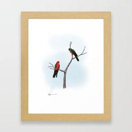 King Parrots Framed Art Print