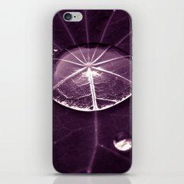 purple water drop XVI iPhone Skin