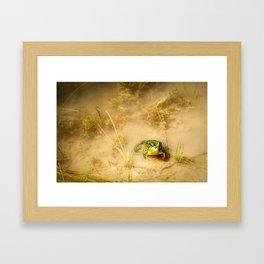 The Pond 2 Framed Art Print