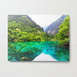 ANCIENT GLORY // Five Flower Lake, Jiuzhaigou Metal Print