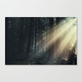 Lost In The Light Canvas Print