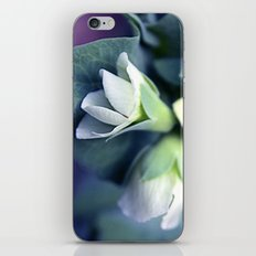 plant iPhone & iPod Skin