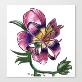 Exotic Lily Flower Canvas Print