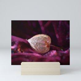 Chinese Lantern Gem of Nature  Mini Art Print