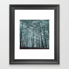 cold forest VI Framed Art Print