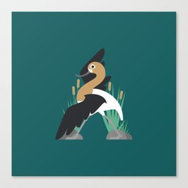 A is for Avocet Canvas Print