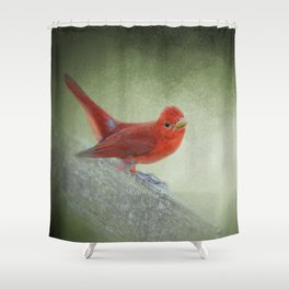 Song of the Summer Tanager 4 - Birds Shower Curtain