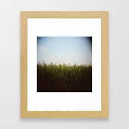 Midwest Field 02, Holga Framed Art Print
