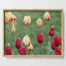 Red & Yellow Tulips Serving Tray