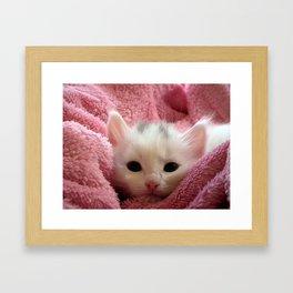 Kawaii cute pink kitten white kitty cat photo Framed Art Print