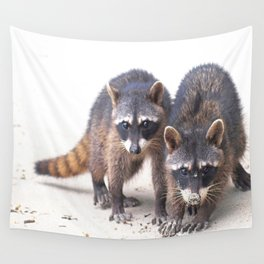Cute wild Racoons in Costa Rica Wall Tapestry