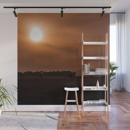 Sun Gazing Wall Mural