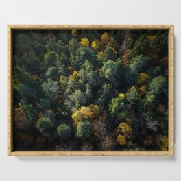 Forest Landscape - Aerial Photography Serving Tray
