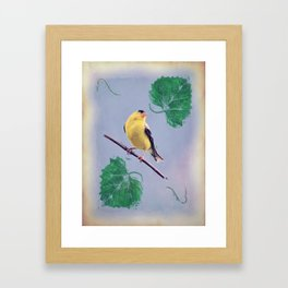 Goldfinch Cottage Chic Country Art Photo Art A355 Framed Art Print