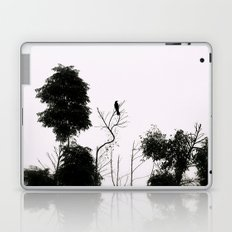 Black Bird Laptop & iPad Skin