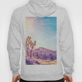 cactus at the desert in summer with strong sunlight Hoody