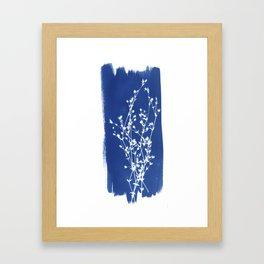 Herbal Sunprint #1 Framed Art Print