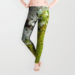 Tree Bark with Lichen#8 Leggings