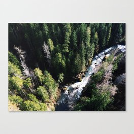 Fear of Heights Canvas Print