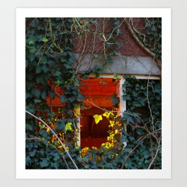 Ivy Barn Window lit up Art Print
