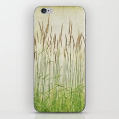 Summer Grasses iPhone & iPod Skin