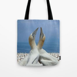 Northern Gannets in love Tote Bag