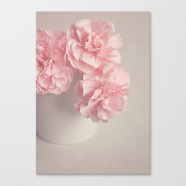 Frilly pink Carnations flowers. Canvas Print