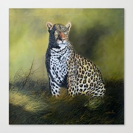 A painting of a Leopard stare Canvas Print