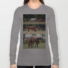 Horses family Long Sleeve T-shirt