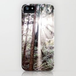 Big Sur Forest Sunbeams iPhone Case