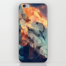 Mountain low poly iPhone & iPod Skin