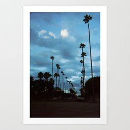 Palm Trees in Venice Beach, California  Art Print
