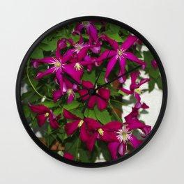 Clematis viticella Mme Julia Correvon Wall Clock