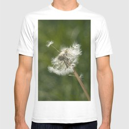 diente de león T-shirt