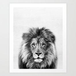 Lion Peekaboo print Art Print