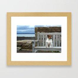 perro pensando Framed Art Print
