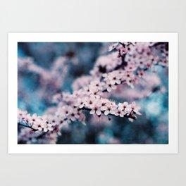 springtime #1 Art Print
