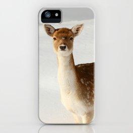 Winter's Beauty iPhone Case