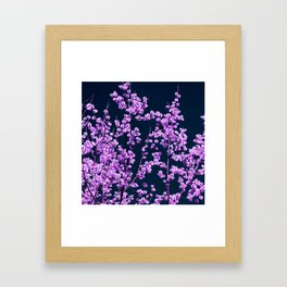 willow catkin II Framed Art Print