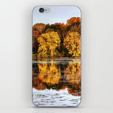 Rock Cut State Park iPhone & iPod Skin