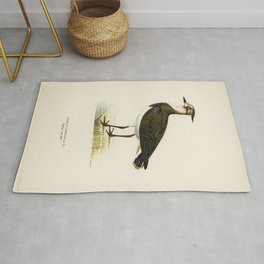 Nortnern lapwing (vanellus vanellus) illustrated by the von Wright brothers Rug