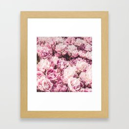 P.Rose-Mairy Framed Art Print