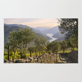 Track in the Douro, Portugal Rug