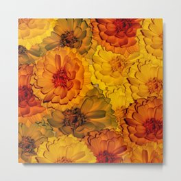 Warm and multicolored flowers Metal Print