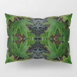 Pelargonium Circle Pillow Sham
