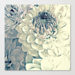 Creamy Turquoise And Pink Dahlias Canvas Print