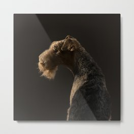 Airedale Terrier dog Metal Print
