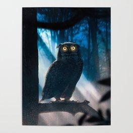 I am a cute Owl Poster