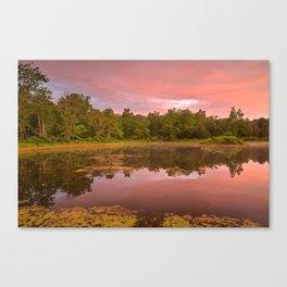 Pink Twilight Marsh Canvas Print