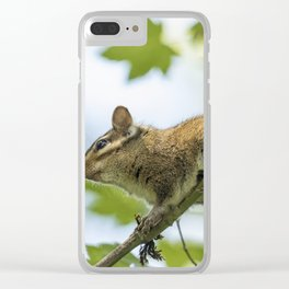Out On a Limb Clear iPhone Case